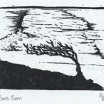 wood engraving, blackthorn bush