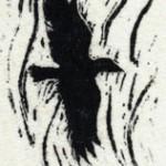 wood engraving, raven flying