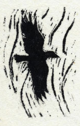 wood engraving, raven flying